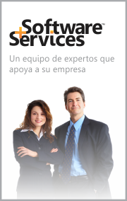 Software+Services